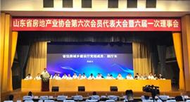 临沂中疆房地产开发有限公司当选山东房地产业协会常务理事单位